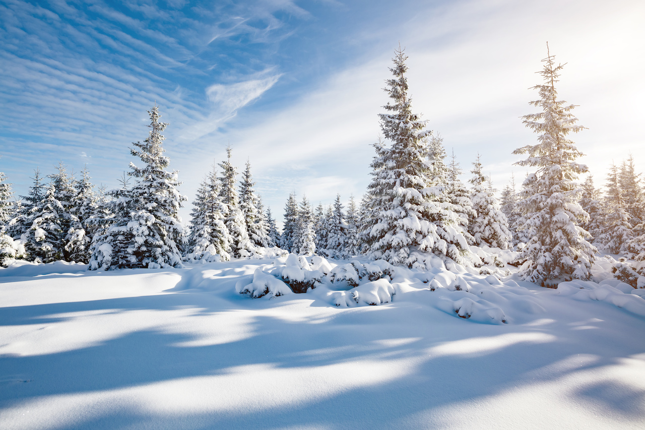 Cut Costs in Winter and Stay Warm | Armbrust Plumbing Inc